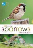RSPB Spotlight Sparrows (eBook, PDF)