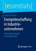 Energiebeschaffung in Industrieunternehmen (eBook, PDF)