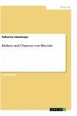 Risiken und Chancen von Bitcoins
