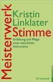 Meisterwerk Stimme (eBook, PDF)
