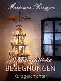 Weihnachtliche Begegnungen (eBook, ePUB)