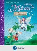 Wir retten die Zauberwaldschule! / Maluna Mondschein Bd.15 (eBook, ePUB)