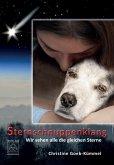 Sternschnuppenklang (eBook, ePUB)