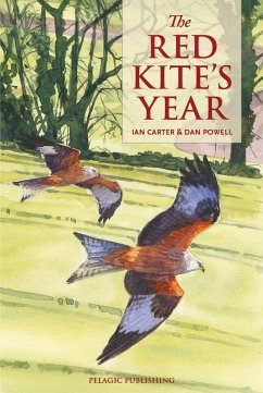 The Red Kites Year