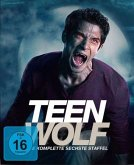 Teen Wolf: Staffel 6 (Softbox)
