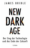 New Dark Age (eBook, ePUB)