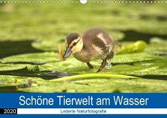 Schöne Tierwelt am Wasser (Wandkalender 2020 DIN A3 quer)