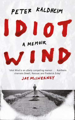 Idiot Wind (eBook, ePUB) - Kaldheim, Peter
