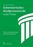 Schweizerisches Strafprozessrecht in der Praxis (eBook, PDF)