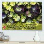 Himmlische Hortensien(Premium, hochwertiger DIN A2 Wandkalender 2020, Kunstdruck in Hochglanz)