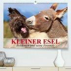 Kleiner Esel. Boldewyn und seine Freunde(Premium, hochwertiger DIN A2 Wandkalender 2020, Kunstdruck in Hochglanz)