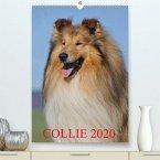 Collie 2020(Premium, hochwertiger DIN A2 Wandkalender 2020, Kunstdruck in Hochglanz)