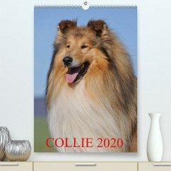 Collie 2020(Premium, hochwertiger DIN A2 Wandkalender 2020, Kunstdruck in Hochglanz) - Starick, Sigrid
