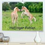 Haflinger Fohlen(Premium, hochwertiger DIN A2 Wandkalender 2020, Kunstdruck in Hochglanz)