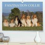 Faszination Collie 2020(Premium, hochwertiger DIN A2 Wandkalender 2020, Kunstdruck in Hochglanz)