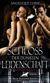 Schloss der dunklen Leidenschaft   Erotischer SM-Roman (eBook, PDF)
