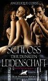 Schloss der dunklen Leidenschaft   Erotischer SM-Roman (eBook, ePUB)