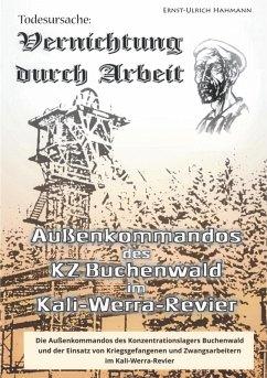 Todesursache - Vernichtung durch Arbeit (eBook, ePUB) - Hahmann, Ernst-Ulrich