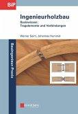Ingenieurholzbau (eBook, ePUB)