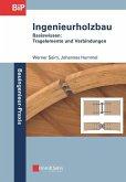Ingenieurholzbau (eBook, PDF)