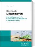 Handbuch Kindesunterhalt