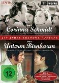 Filmwerke-200 Jahre Theodor Fontane