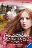 Calypsos Fohlen / Pferdeflüsterer Academy Bd.6