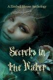 Secrets in the Water (eBook, ePUB)