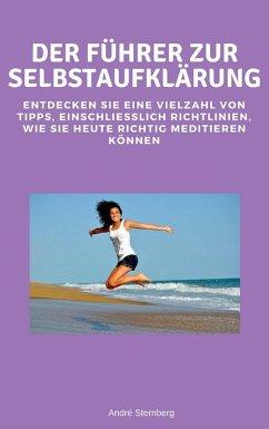 Der Führer zur Selbstaufklärung (eBook, ePUB) - Sternberg, Andre