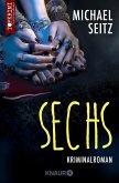 Sechs (eBook, ePUB)