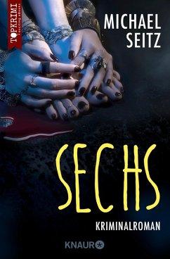 Sechs (eBook, ePUB) - Seitz, Michael
