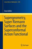 Supergeometry, Super Riemann Surfaces and the Superconformal Action Functional (eBook, PDF)