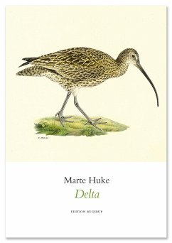 Delta - Huke, Marte