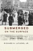 Submerged on the Surface (eBook, ePUB)