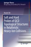 Soft and Hard Probes of QCD Topological Structures in Relativistic Heavy-Ion Collisions (eBook, PDF)