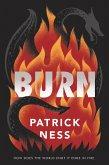 Burn (eBook, ePUB)