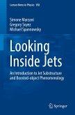 Looking Inside Jets (eBook, PDF)