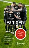 Teamgeist (eBook, PDF)