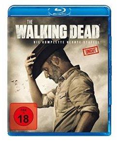 The Walking Dead - Staffel 9 - Andrew Lincoln,Norman Reedus,Lauren Cohan