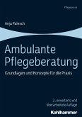 Ambulante Pflegeberatung (eBook, PDF)