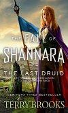 The Last Druid (eBook, ePUB)