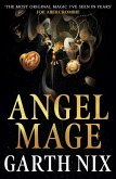 Angel Mage (eBook, ePUB)