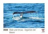 Wale und Orcas - Giganten der Meere 2020 - Timokrates Kalender, Tischkalender, Bildkalender - DIN A5 (21 x 15 cm)