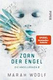 Zorn der Engel / Die Angelussaga Bd.2