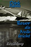 Bevor die Welle bricht (eBook, ePUB)