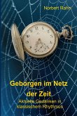 Geborgen im Netz der Zeit (eBook, ePUB)