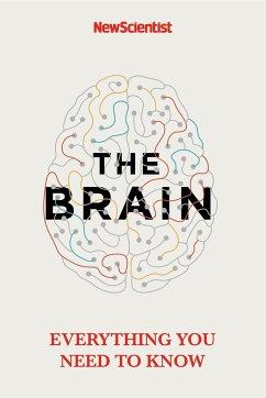The Brain - New Scientist