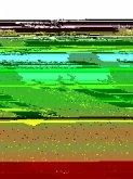 Hörst du die Elefanten brüllen? (eBook, PDF)