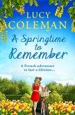 A Springtime To Remember (eBook, ePUB)