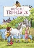 Ein Einhorn spricht nicht mit jedem! / Ponyschule Trippelwick Bd.2 (eBook, ePUB)